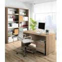 Mesa despacho + Cajonera + Estanterias